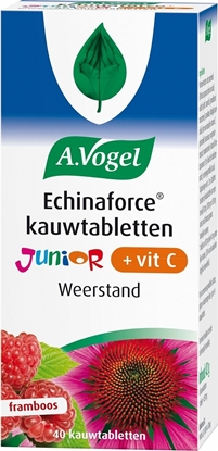 VOGEL ECHINAFORCE JUNIOR VIT C   40S